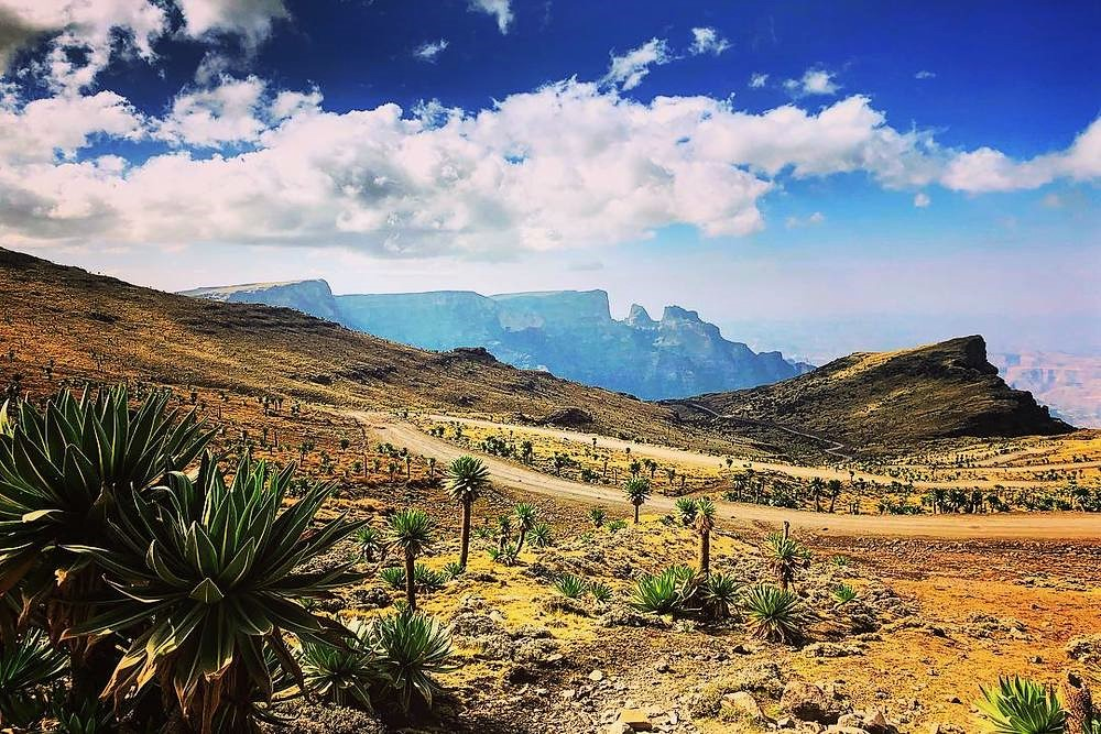 Geech Camp Simien Mountains
